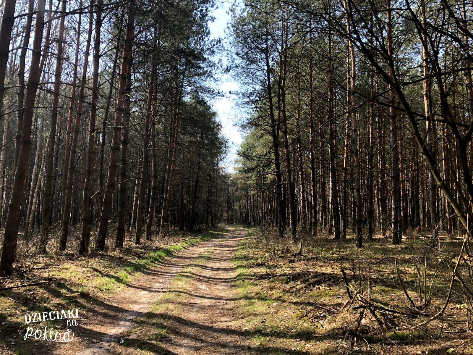 Czahary - Polesie