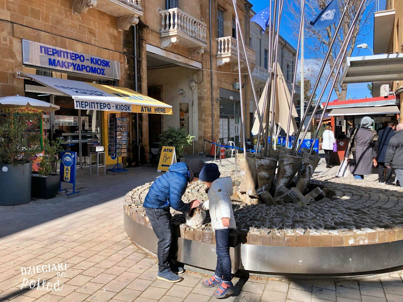 Nikozja-przejście graniczne