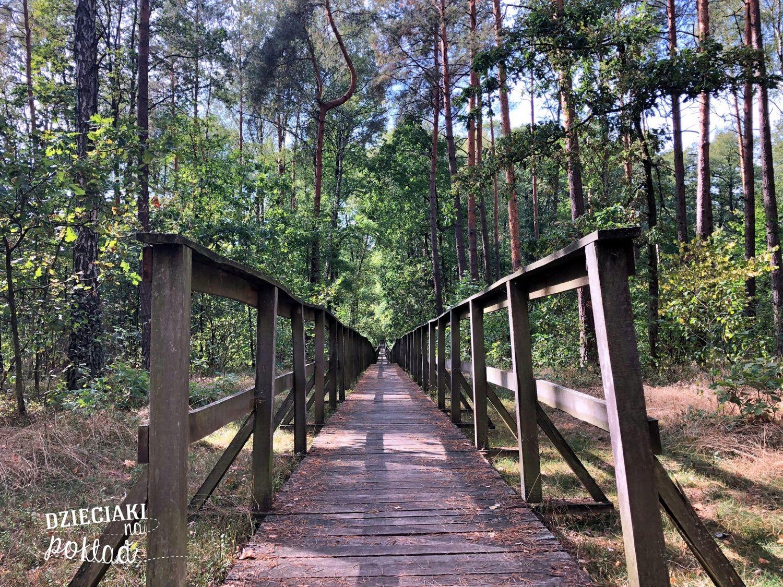 ścieżki w lubelskim - Bobrówka