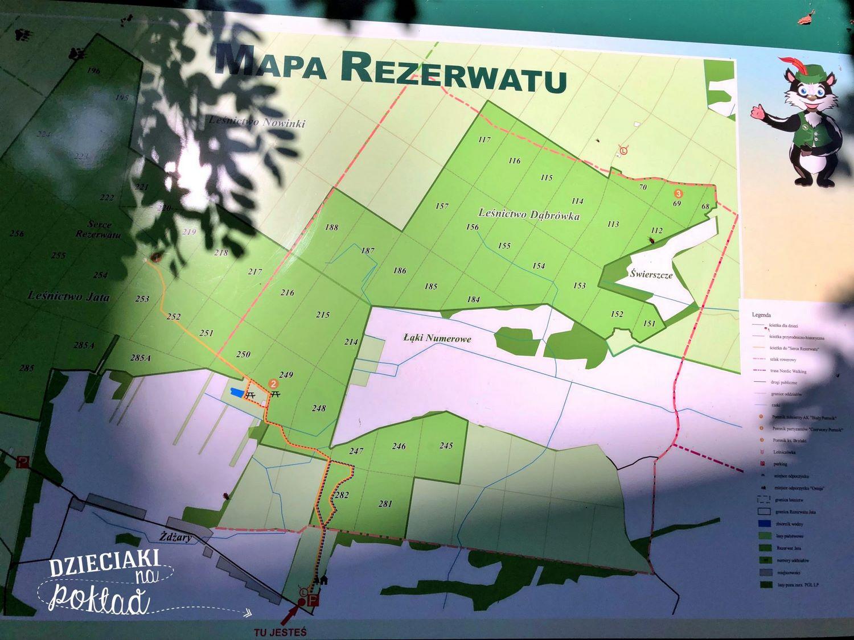 mapa rezerwatu Jata