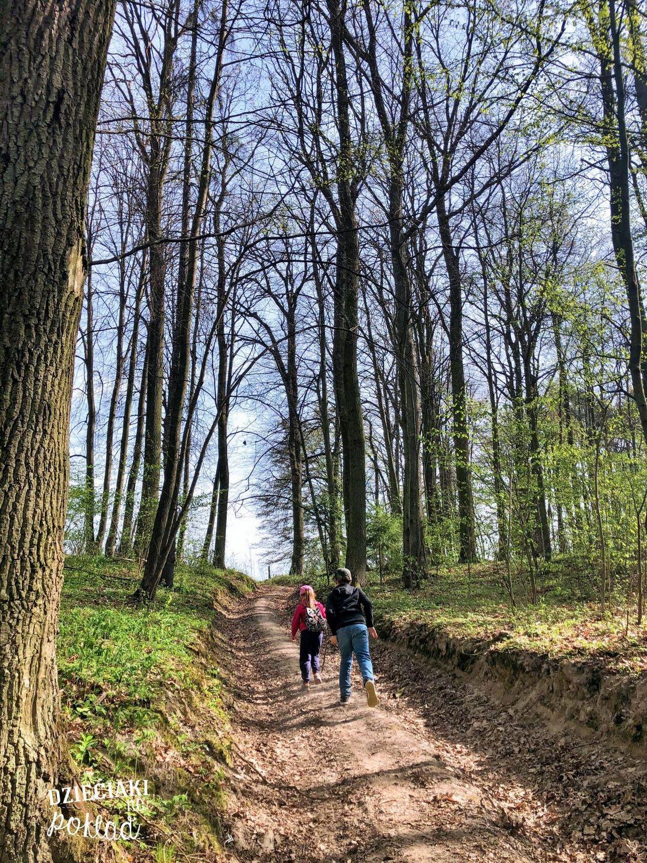 ścieżki w lubelskim - Skrzypowy dół