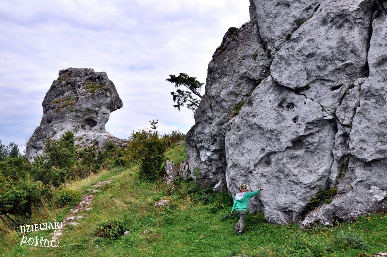 Góra Zborów - Jura Krakowsko-Częstochowska