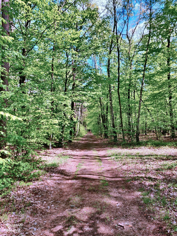 ścieżka Perehod