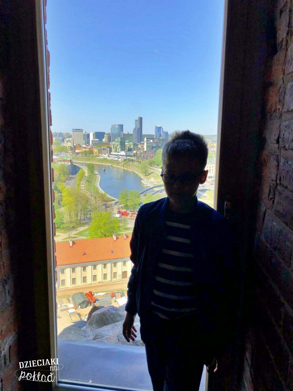 Wilno - widok z wieży Giedymina