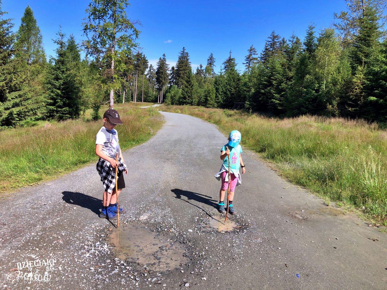Kotlina Kłodzka - szlak na Jagodną