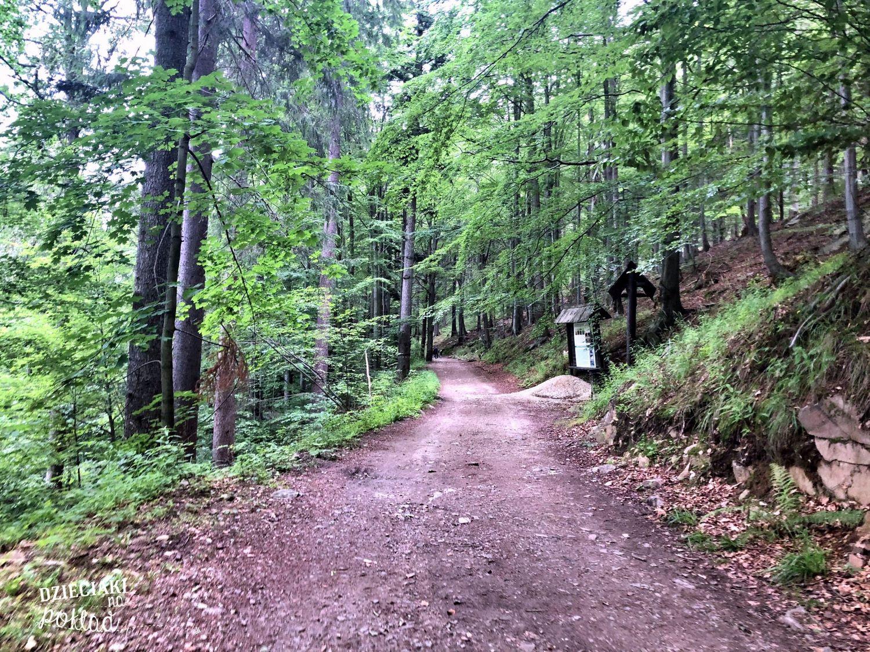 Międzygórze - trasa do Ogrodu Bajek