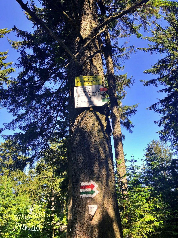 Wielka Sowa - szlak ze schroniska Orzeł