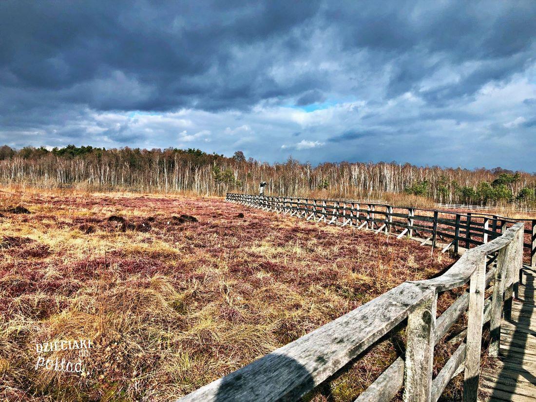 Rezerwat Jezioro Obradowskie
